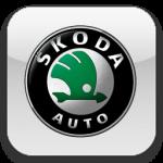 Чип-тюнинг автомобилей марки Skoda